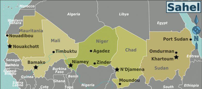 Africa, Si Comincia A Delineare La Missione Italiana In Niger