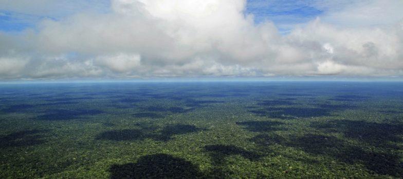 Anonymous Dichiara Guerra Al Brasile Per Gli Incendi In Amazzonia