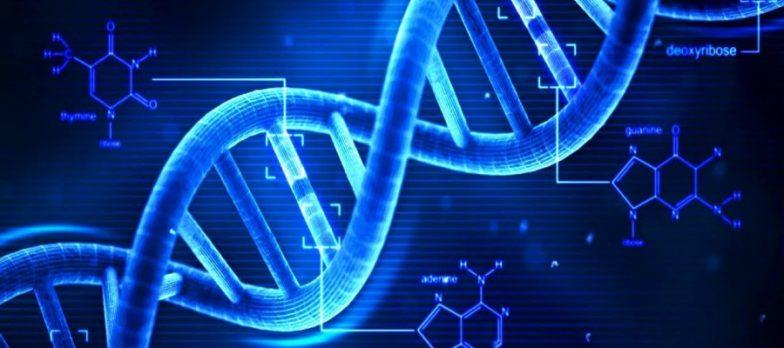 Gli Scienziati Entrano In Campo Per Proteggere Il DNA Dal Cybercrime