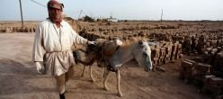 Iraq Hawija Isis Isil Daesh Statoislamico Is Muli Ditala Salahuddin Isf Offensiva