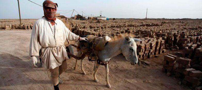 Iraq, Isis Fugge Da Hawija Con I Muli E La Cassa Verso Le Montagne