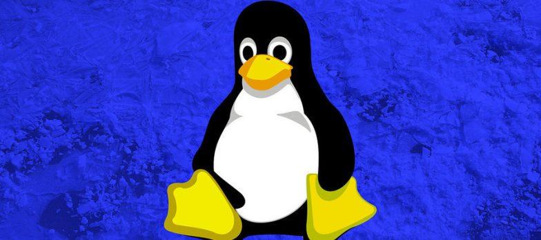 Scoperte Importanti Vulnerabilità All'interno Dei Kernel Di Linux E FreeBSD