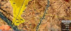 Raqqa Siria Deirezzor Isis Isil Daesh Statoislamico Sdf Saa