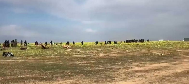 Syria, Isis Loses 45 Members In A SDF Maxi Raid In Deir Ezzor